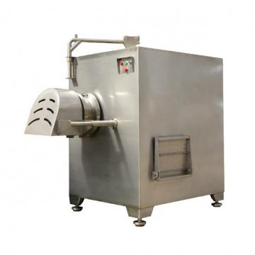 300W Meat Grinder with Blender