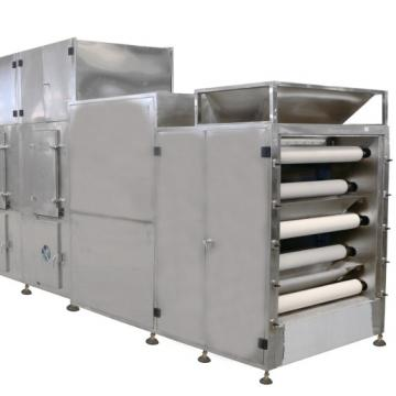 Industries and Commerical Stainless Steel Microwave Fruit Drying Dryer Machine