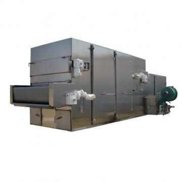 Fruit Drying Process Machine/mesh belt dryer