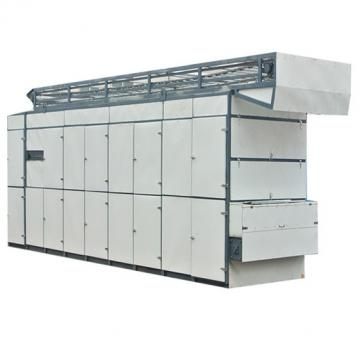 Multi-layers Drier/fruit Mesh belt dryer